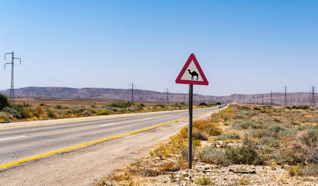 כביש באמצע הנגב
